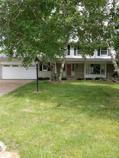 Sterling Heights, Washington, Washington Twp, Bloomfield Hills, Bloomfield Twp, Novi, Royal Oak, Royal Oak Twp Single Family Home For Sale: 41848 Hillview Drive