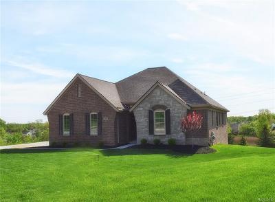 White Lake, White Lake Twp Single Family Home For Sale: 550 Red Bank Drive