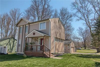 Lake Orion, Orion Twp, Orion Single Family Home For Sale: 147 Detroit Boulevard S