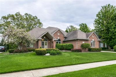 Shelby Twp Single Family Home For Sale: 54836 Spyria