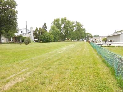 Chesterfield Twp Residential Lots & Land For Sale: 32905 Sutton Road