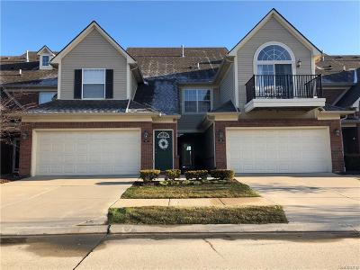 Shelby Twp Condo/Townhouse For Sale: 7853 Ambassador Drive