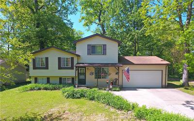 White Lake Twp MI Single Family Home For Sale: $179,900