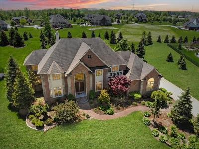 Novi Single Family Home For Sale: 50985 Sunday Drive