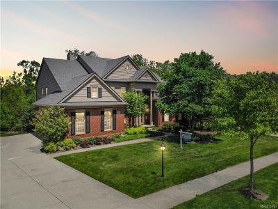 Novi MI Single Family Home For Sale: $664,900