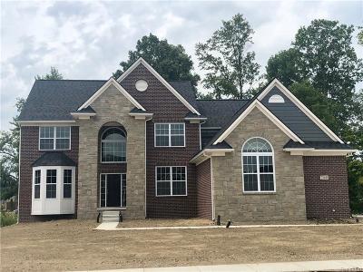 Lyon Twp Single Family Home For Sale: 23649 Yerkes Drive