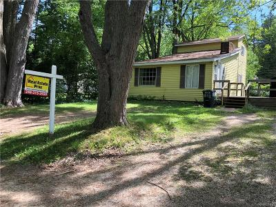 Brandon Twp Single Family Home For Sale: 1791 Hayes Road