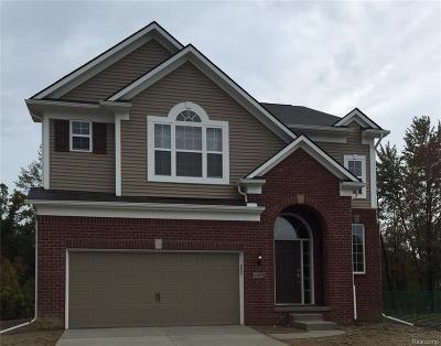 Novi Single Family Home For Sale: 28376 Hanover Drive