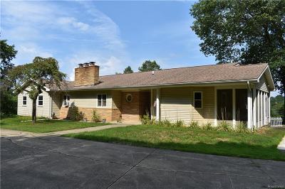 Clarkston, Independence Twp, Springfield Twp, Village Of Clarkston  Single Family Home For Sale: 9056 Tindall Road