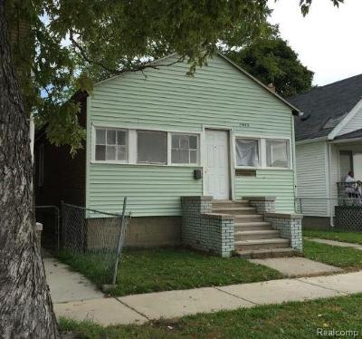 Hamtramck Single Family Home For Sale: 11402 Nagel Street