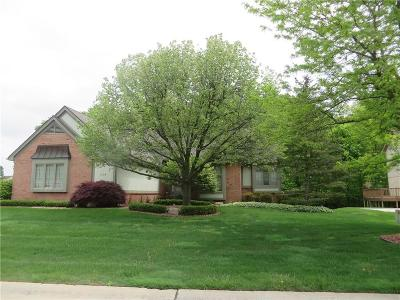 Rochester, Rochester Hills Single Family Home For Sale: 1439 Otter Drive