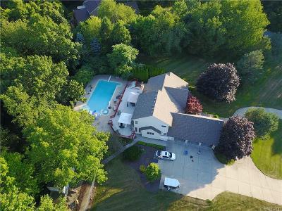 White Lake Single Family Home For Sale: 146 E Meadow Circle Circle