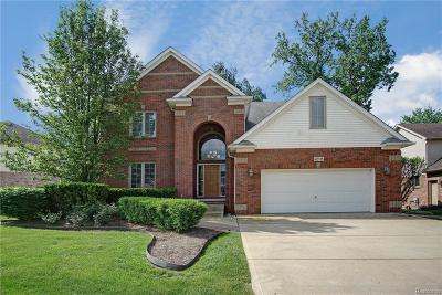 Novi Single Family Home For Sale: 42725 Morgan Creek Court