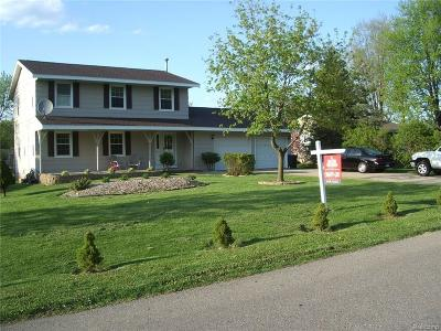 Rochester Hills Single Family Home For Sale: 1900 Alsdorf Avenue