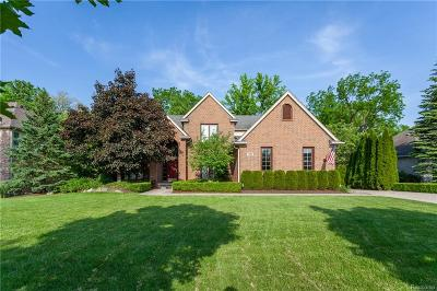 West Bloomfield, West Bloomfield Twp Single Family Home For Sale: 7425 Millwood Rd