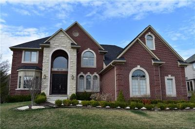 Northville Twp MI Single Family Home For Sale: $875,000