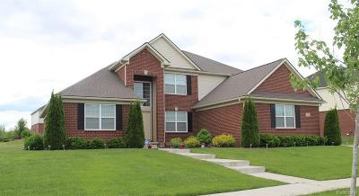 Canton Single Family Home For Sale: 7020 Sylvania Lane