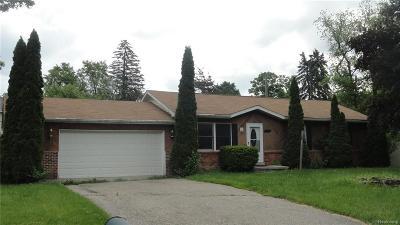 Farmington Hills Single Family Home For Sale: 21670 Hancock Street