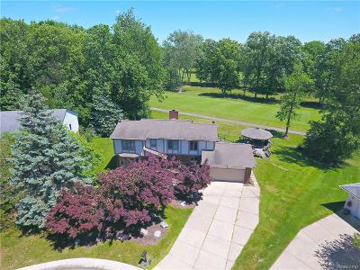 West Bloomfield Twp Single Family Home For Sale: 5183 Shenandoah Court