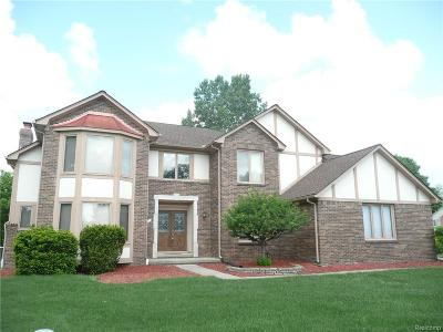 Rochester Hills Single Family Home For Sale: 1335 Michele Court
