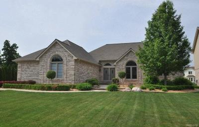 Sterling Heights Single Family Home For Sale: 3252 Lake Forest Drive