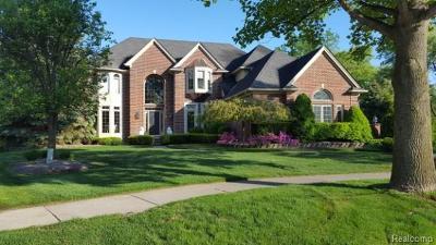 Novi Single Family Home For Sale: 41836 Hempshire Street