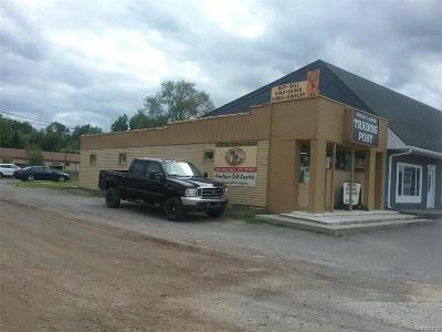 Oakland County Commercial For Sale: 7625 Highland Road Road S