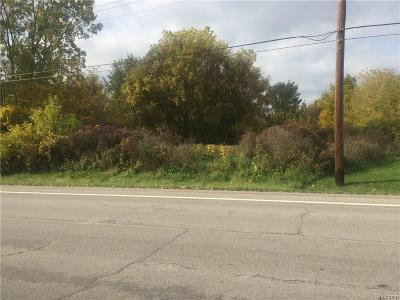 Cottrellville Twp MI Residential Lots & Land For Sale: $25,000