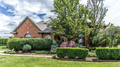 Novi Single Family Home For Sale: 41690 Dukesbury Court