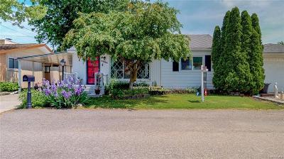 Chesterfield Twp Single Family Home For Sale: 45960 Edgewater Street