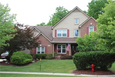 Novi Single Family Home For Sale: 23421 Mystic Forest Drive