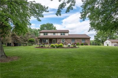 Ray Twp Single Family Home For Sale: 16915 29 Mile Road