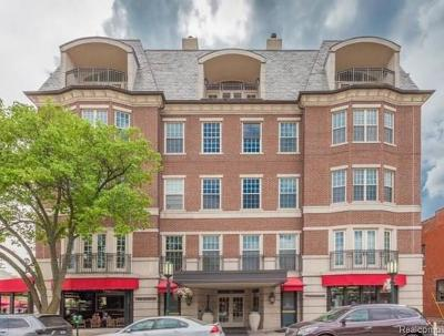 Birmingham Condo/Townhouse For Sale: 180 Pierce Street