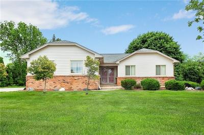 Rochester Hills Single Family Home For Sale: 304 Coldiron Drive