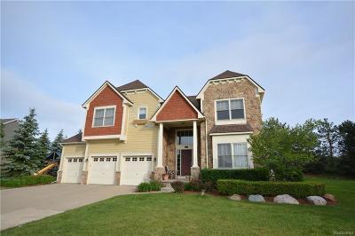Novi Single Family Home For Sale: 44719 Tiverton