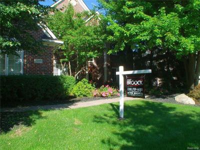 Rochester Hills Single Family Home For Sale: 3695 Sleepy Fox Drive