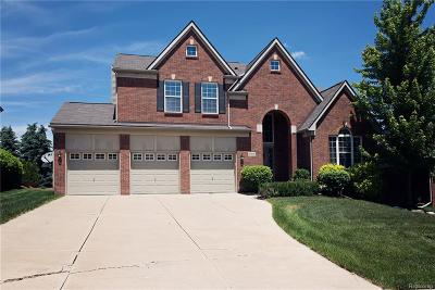 Northville Single Family Home For Sale: 49896 Parkside Drive