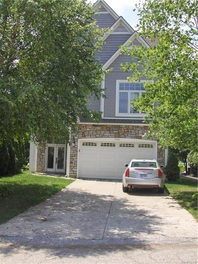 West Bloomfield, West Bloomfield Twp Single Family Home For Sale: 5742 Putnam