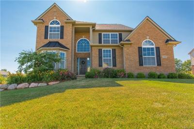 Lyon Twp Single Family Home For Sale: 24045 Stoneleigh Drive