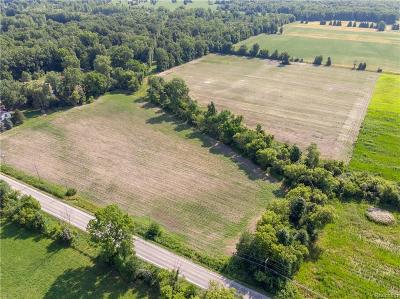 Ray Twp Residential Lots & Land For Sale: Romeo Plank
