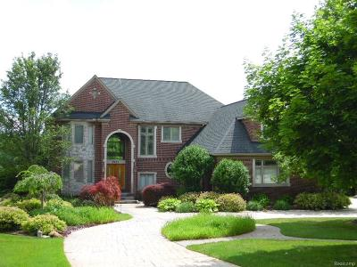 Milford Twp Single Family Home For Sale: 2921 Stone Meadow Drive