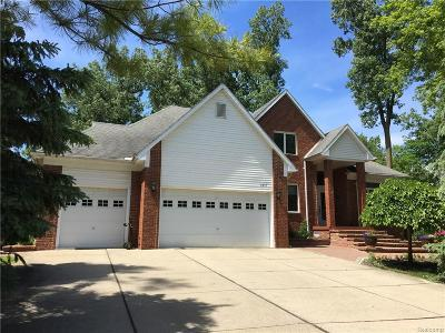 Rochester Hills Single Family Home For Sale: 2416 S Christian Hills Drive
