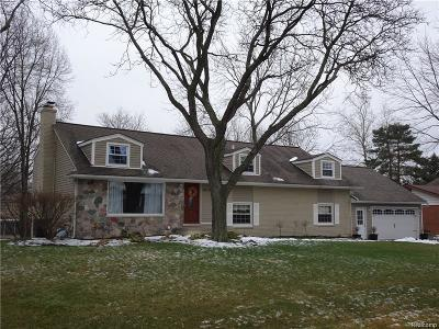 Farmington Hills Single Family Home For Sale: 28634 Kirkside Lane