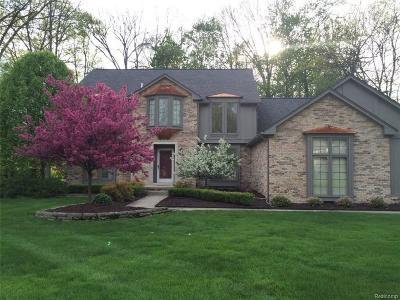 Shelby Twp Single Family Home For Sale: 53681 Oakview Drive