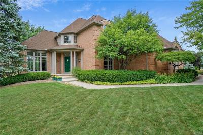 Novi Single Family Home For Sale: 21805 Chase Drive
