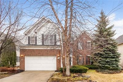 South Lyon Single Family Home For Sale: 1119 Polo