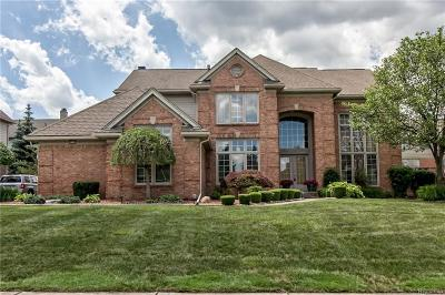 West Bloomfield, West Bloomfield Twp Single Family Home For Sale: 6590 Shadowood Drive