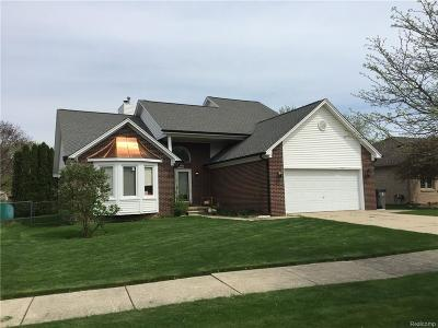 Clinton Twp Single Family Home For Sale: 39860 E River Court