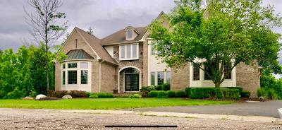 West Bloomfield, West Bloomfield Twp Single Family Home For Sale: 4849 E Strong Court