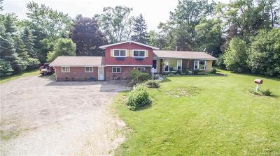 Washtenaw County Single Family Home For Sale: 4200 S Maple Road